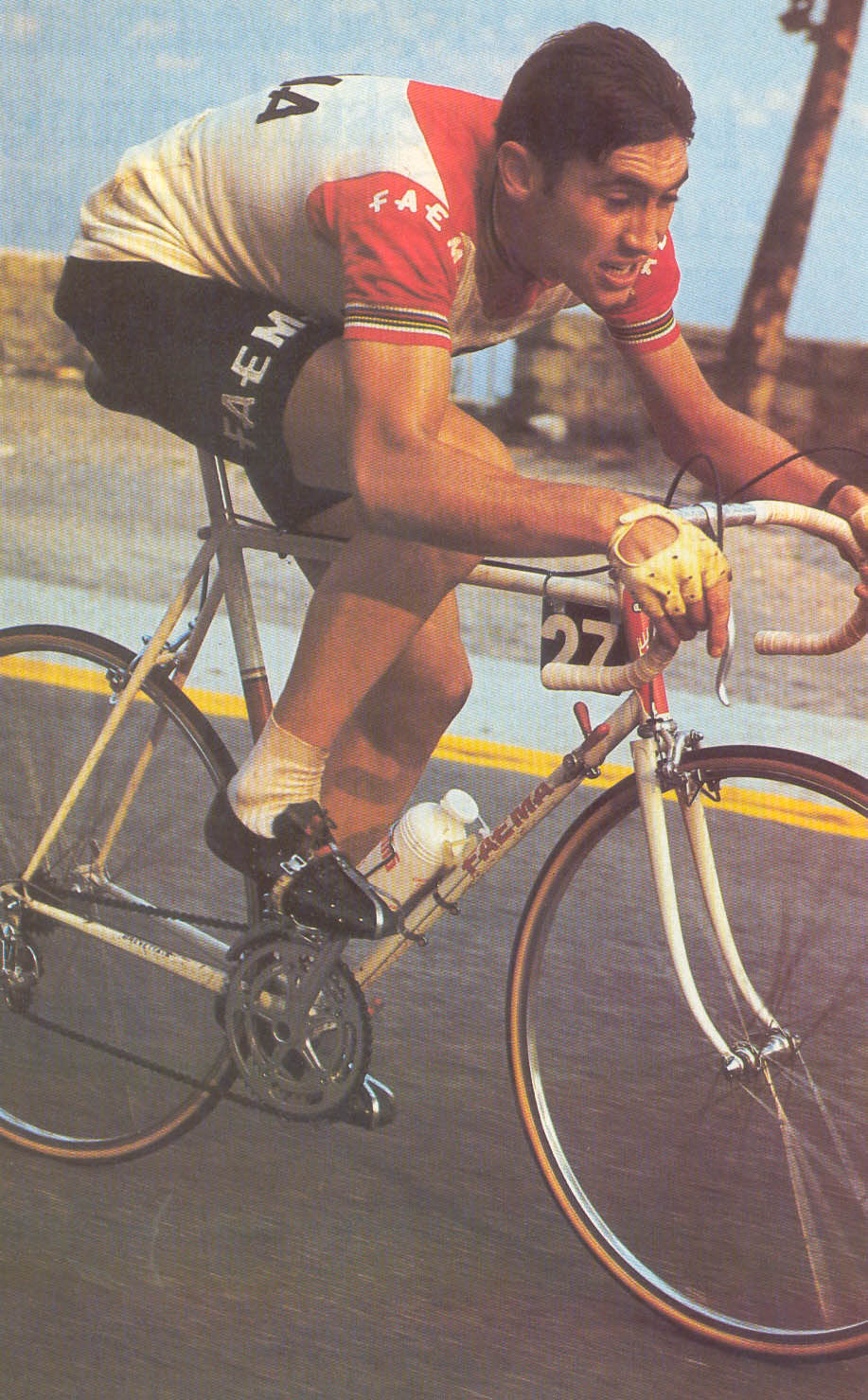 http://www.theracingbicycle.com/images/Merckx_Faema.jpg
